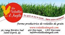 Volailles_logo